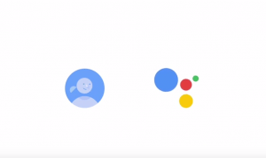 a google for everyone