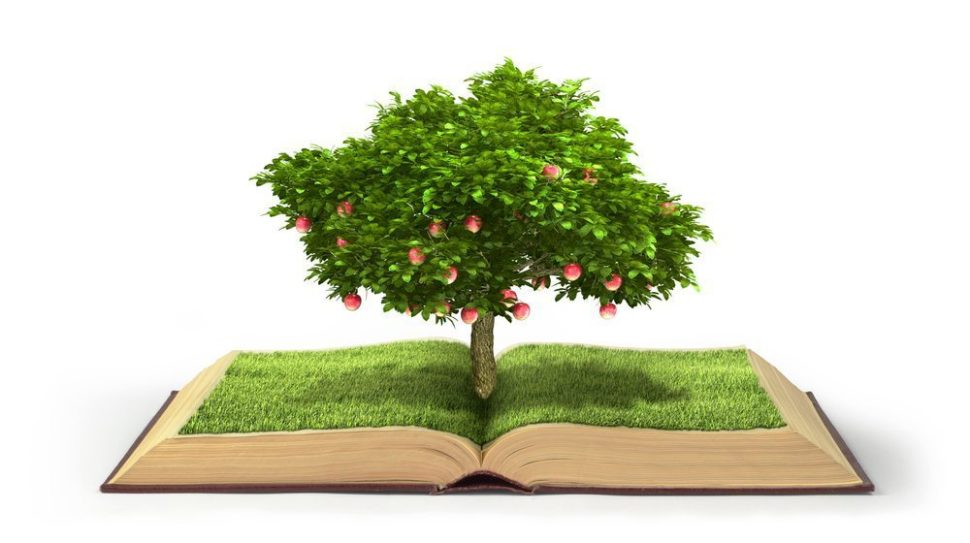 Tree of Knowledge | Studiovin | Shutterstock.com