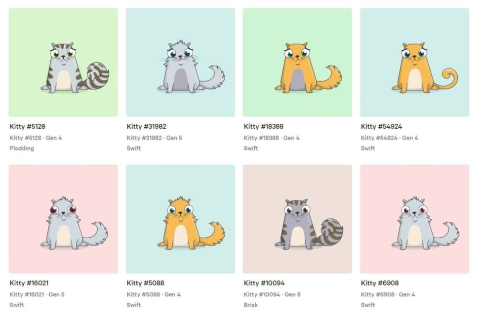 Arachnid | CryptoKitties|  www.cryptokitties.co
