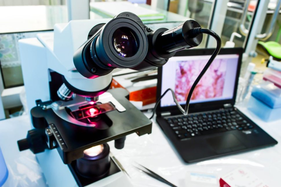 Microscopy has changed a lot recently. | Pakpoom Nunjui | Shutterstock.com