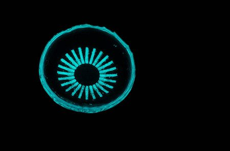 Glowing Contact Lenses