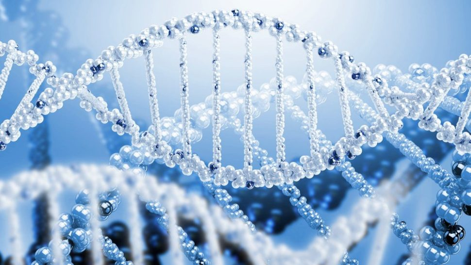 We've learned enough about our genome to begin editing it. Should we? | Hamdee | Shutterstock.com