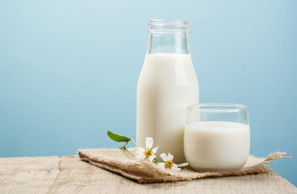 Indian-based startup Milk Mantra is changing the way people view food delivery services in India. | Image by DONOT6_STUDIO | Shutterstock