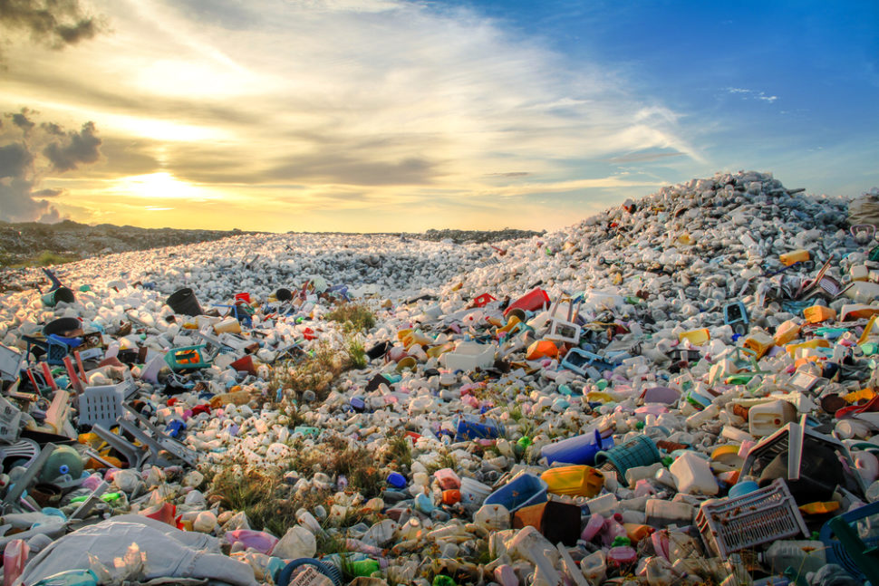 Plastic pollution levels are at a crisis point for the survival of all life on earth. Today, we are in the dawn of the Plastic Age. | Image By Mohamed Abdulraheem | Shutterstock