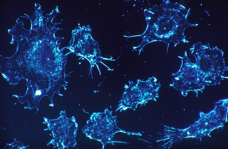 New Treatment Uses Cancer-Killing Virus to Eliminate Tumor Cells