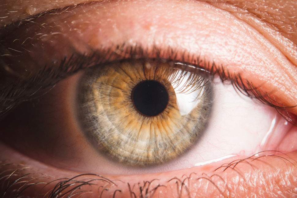 Nanorobots may soon be finding their way into your eyes to help treat disease. | Image By photoJS | Shutterstock.com
