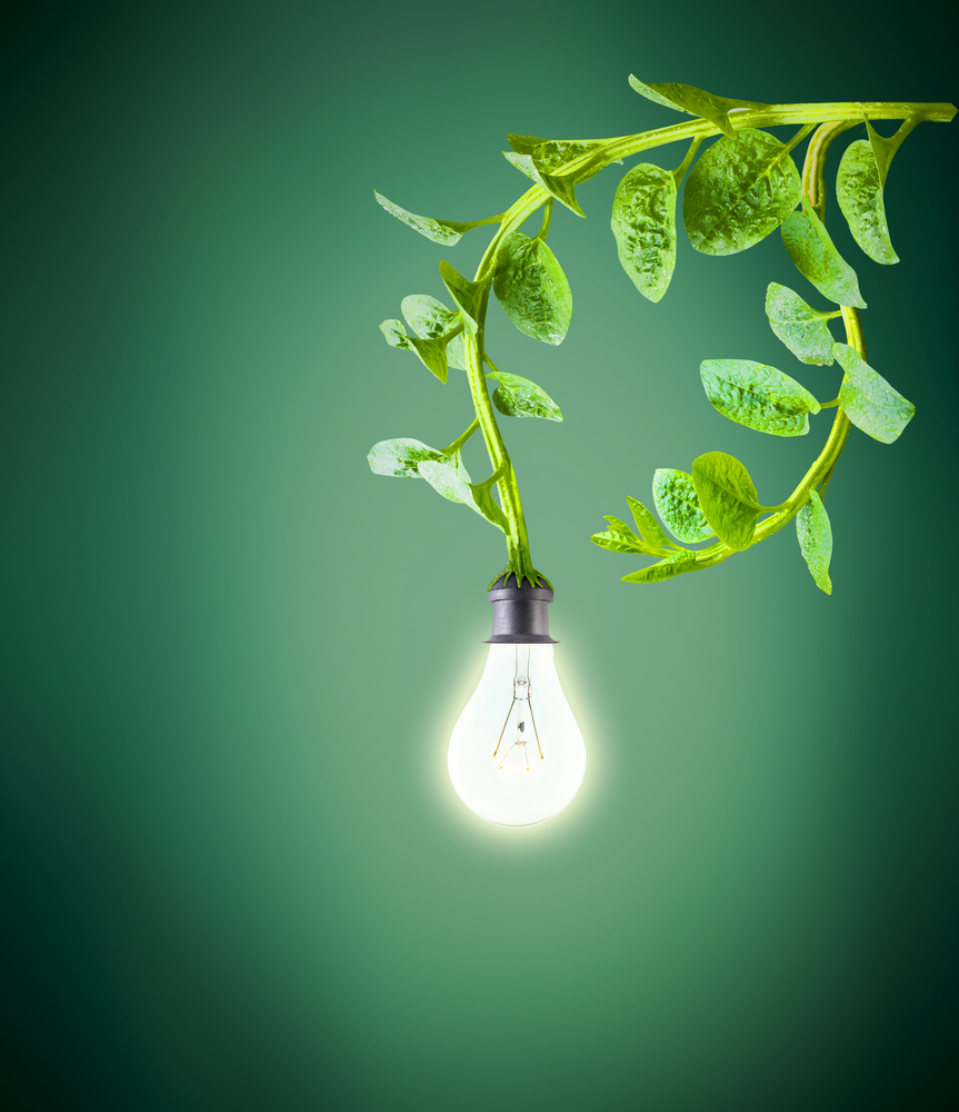 Harvesting electricity from plants could have massive benefits to future zero emission power projects. | Image By Mrs_ya | Shutterstock.com