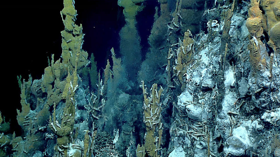 Hydrothermal vent chimeny discovered on May 2, 2016 in the Mariana region | NOAA Ocean Exploration/Flickr.com