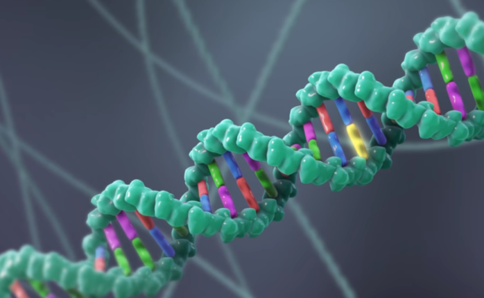 DNA double helix strand | screenshot from CRISPR: Gene Editing and Beyond | Nature Video/Youtube.com