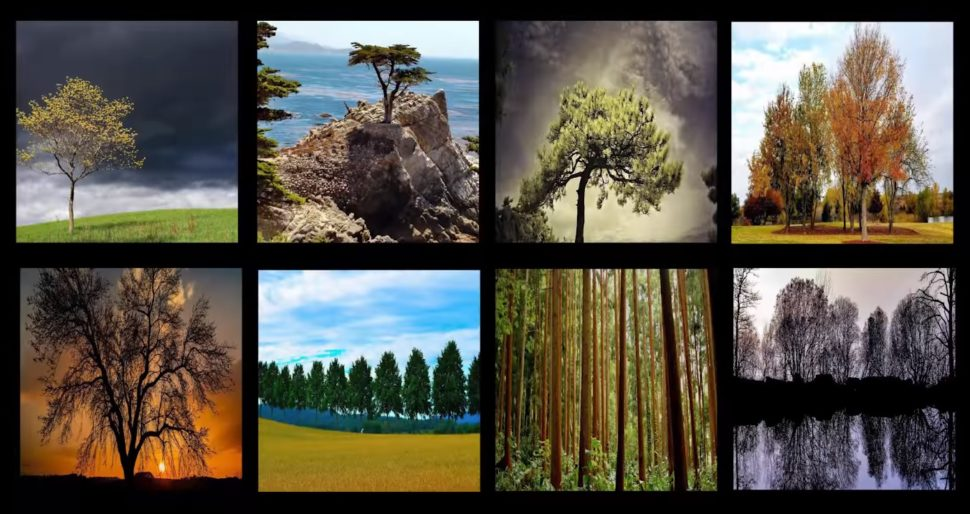 All of these image were synthetically created by NVIDIA's AI. ¦ Image via NVIDIA