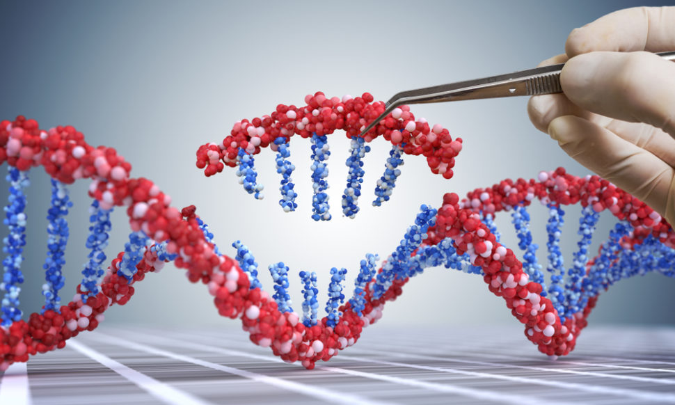 This new genetic tool could revolutionize how we treat many diseases. ¦ vchal / Shutterstock.com
