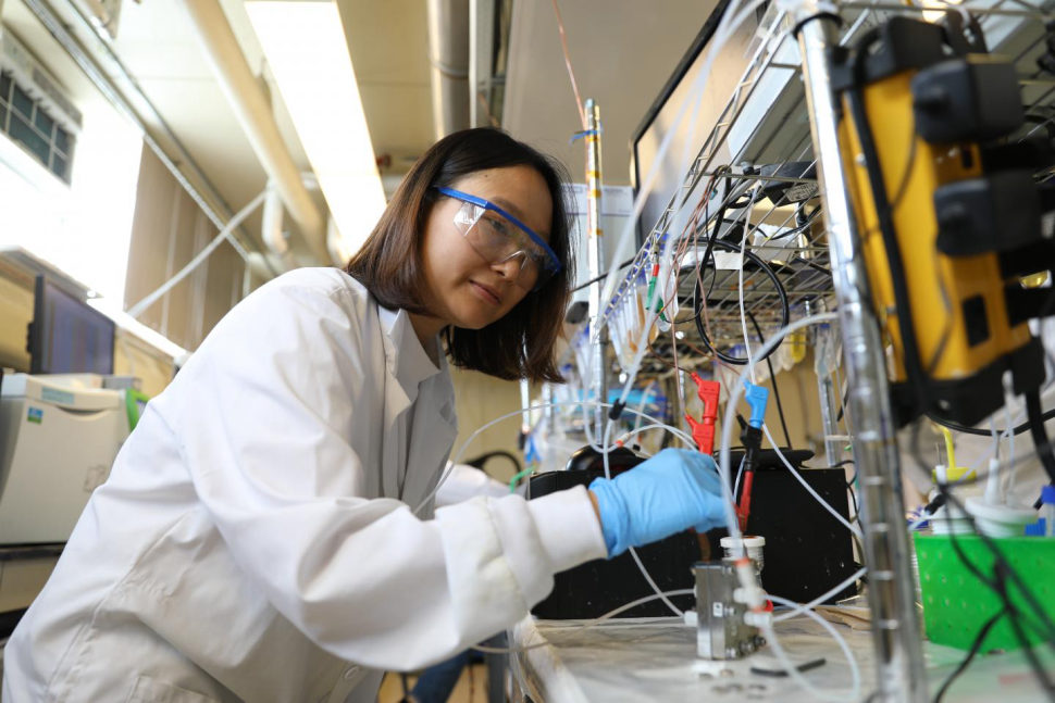 Lead author of the study, University of Toronto Ph.D. student Geonhui Lee while operating the electrolyzer | Image courtesy of Marit Mitchell
