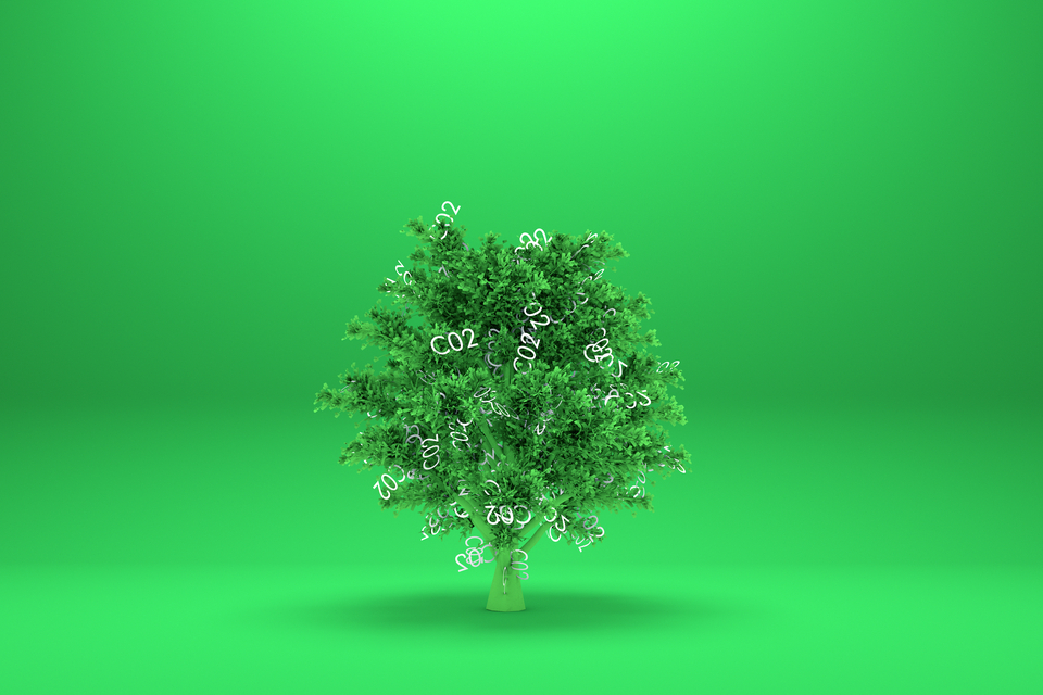 Design_Cells / Shutterstock.com